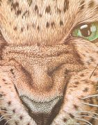 Футболка Злой леопард