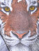 Толстовка Тигр