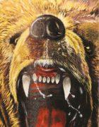 Футболка Злой медведь